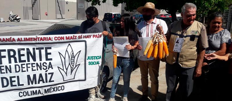 Presenta Frente en Defensa del Maíz amparos para exigir al Gobernador la reglamentación a la Ley